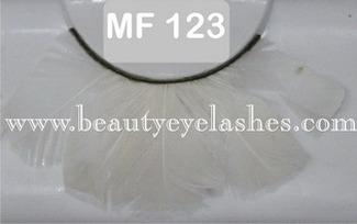 MF123